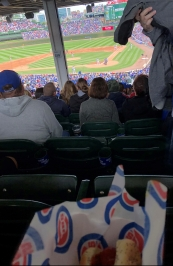 Dog at Wrigley