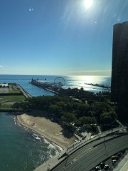 The W View